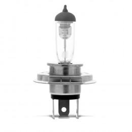 Lampada Halogena H4 12v 55w - Cinoy