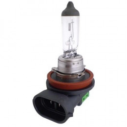 Lampada Halogena  H11 12v 55w - Cinoy